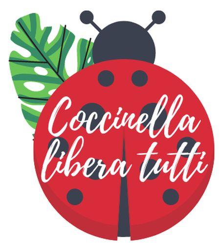 cuccinella